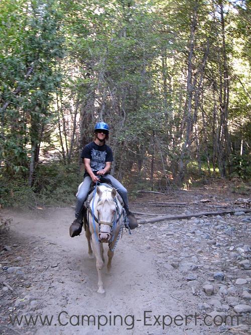 horseback riding in Yosemite